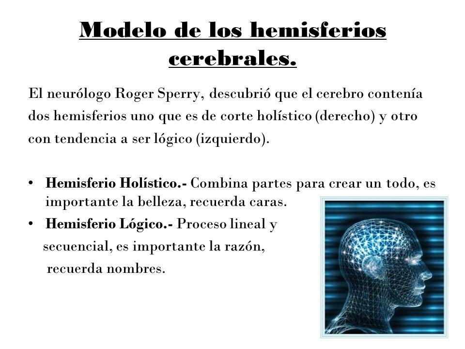 Modelo de los hemisferios cerebrales. El neurólogo Roger Sperry, descubrió que el cerebro contenía dos hemisferios uno que es de corte holístico (dere