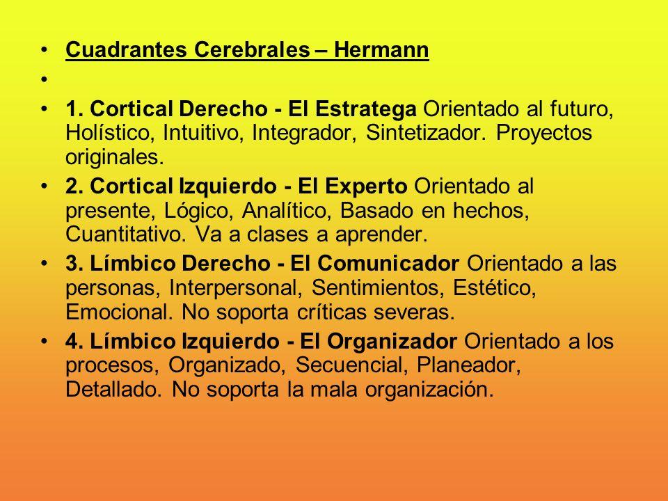 Cuadrantes Cerebrales – Hermann 1. Cortical Derecho - El Estratega Orientado al futuro, Holístico, Intuitivo, Integrador, Sintetizador. Proyectos orig