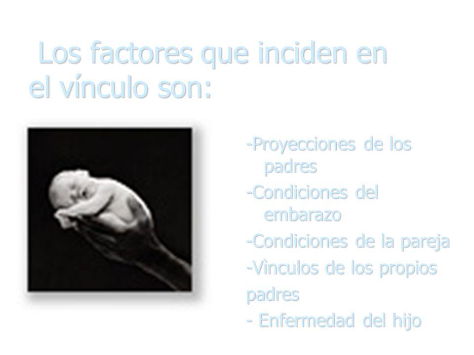 Los factores que inciden en el vínculo son: Los factores que inciden en el vínculo son: -Proyecciones de los padres -Condiciones del embarazo -Condici