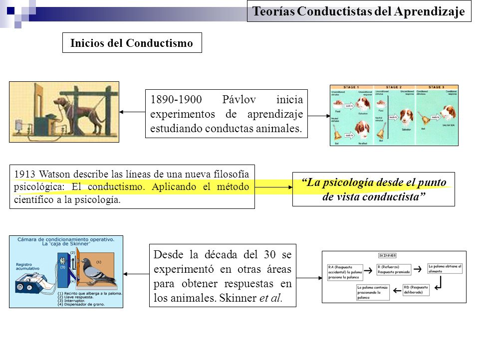 Teorías Conductistas del Aprendizaje Inicios del Conductismo Desde la década del 30 se experimentó en otras áreas para obtener respuestas en los anima