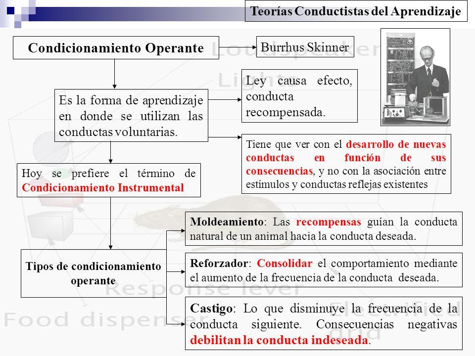 Condicionamiento Operante Burrhus Skinner Es la forma de aprendizaje en donde se utilizan las conductas voluntarias. Ley causa efecto, conducta recomp