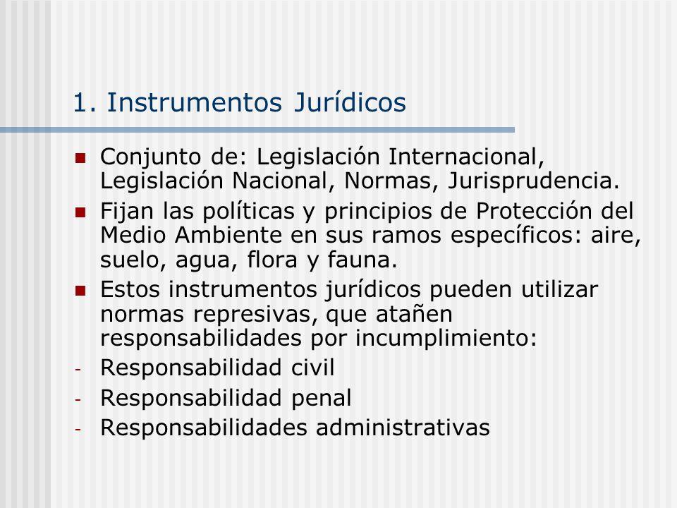 1. Instrumentos Jurídicos Conjunto de: Legislación Internacional, Legislación Nacional, Normas, Jurisprudencia. Fijan las políticas y principios de Pr