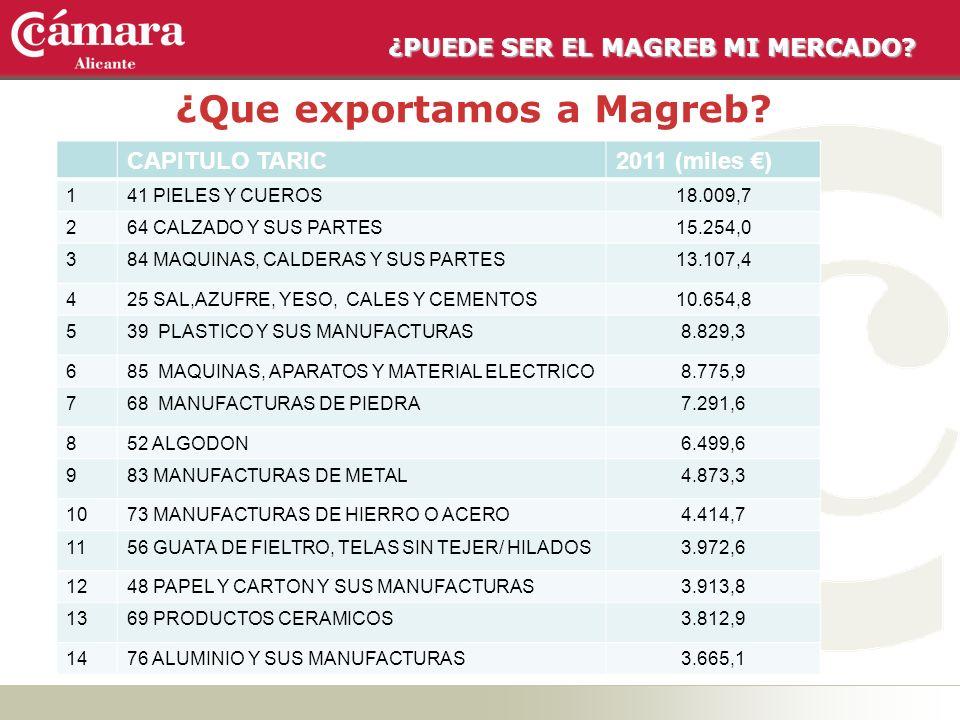 ¿PUEDE SER EL MAGREB MI MERCADO? ¿Que exportamos a Magreb? CAPITULO TARIC2011 (miles ) 141 PIELES Y CUEROS18.009,7 264 CALZADO Y SUS PARTES15.254,0 38