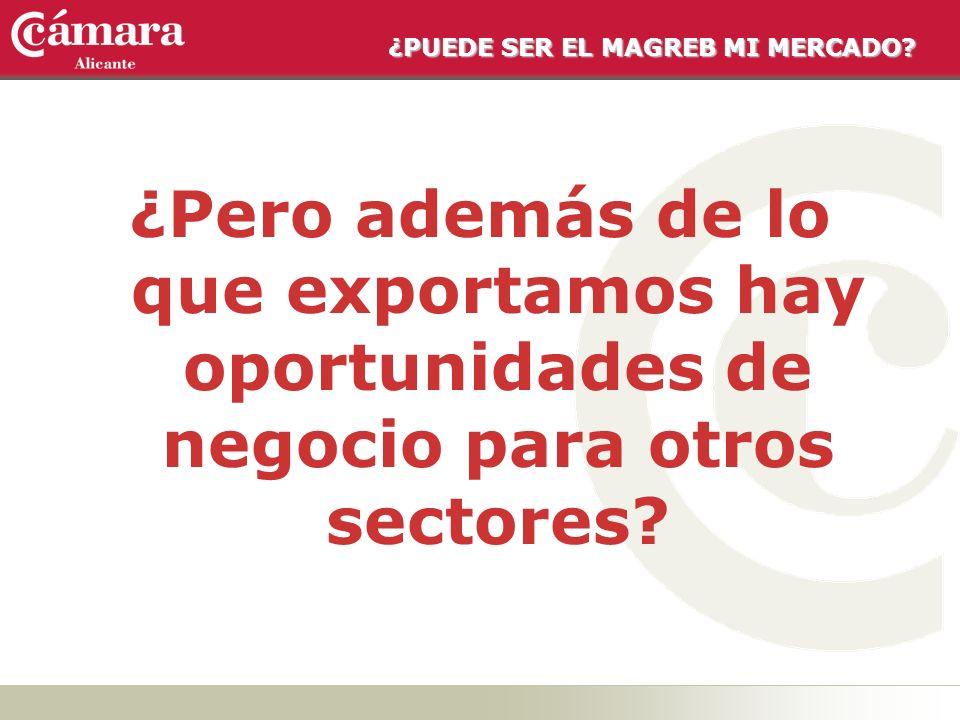 ¿PUEDE SER EL MAGREB MI MERCADO? ¿Pero además de lo que exportamos hay oportunidades de negocio para otros sectores?