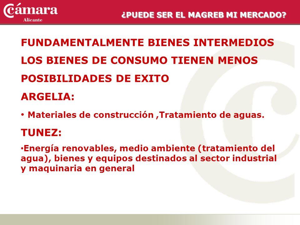 ¿PUEDE SER EL MAGREB MI MERCADO? FUNDAMENTALMENTE BIENES INTERMEDIOS LOS BIENES DE CONSUMO TIENEN MENOS POSIBILIDADES DE EXITO ARGELIA: Materiales de