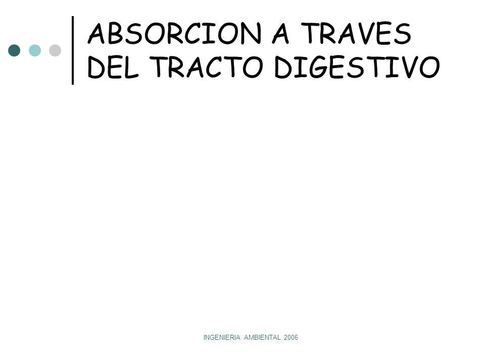 INGENIERIA AMBIENTAL 2006 ABSORCION A TRAVES DEL TRACTO DIGESTIVO Boca Esófago Intestino grueso Intestino delgado EstómagoEstómago