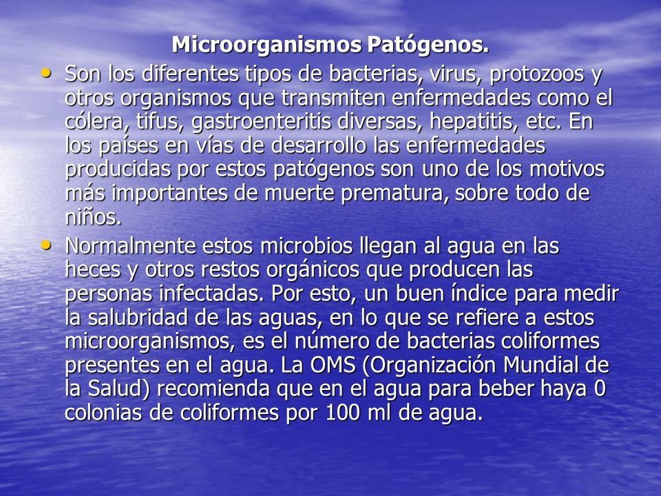 Microorganismos Patógenos. Son los diferentes tipos de bacterias, virus, protozoos y otros organismos que transmiten enfermedades como el cólera, tifu