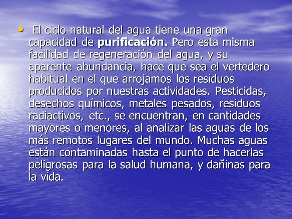 El ciclo natural del agua tiene una gran capacidad de purificación.