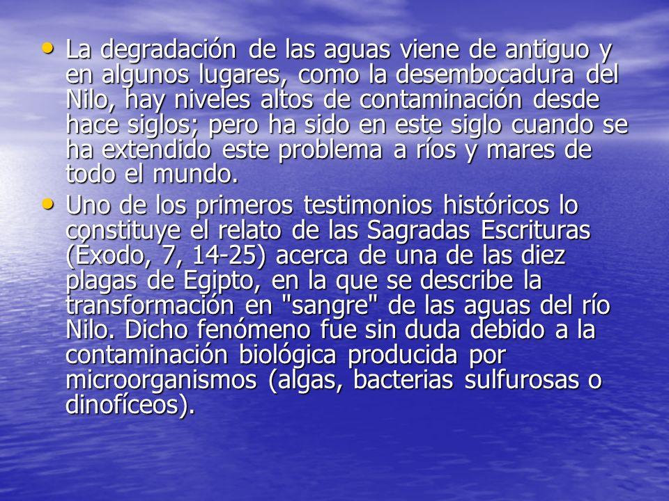Consecuencias en la salud Gracias a la contaminacion del agua se dan toda clase de enfermedades; como ya he explicado, una buena medida(por ejemplo para microorganismos) es siempre clorar y hervir el agua.