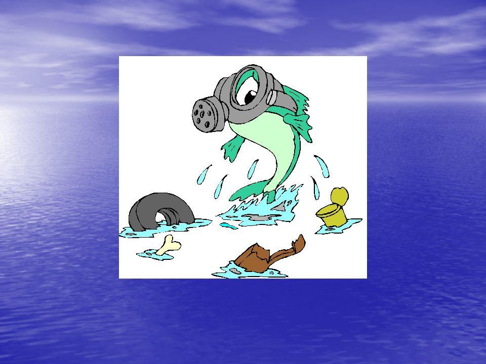 Los lagos, charcas, lagunas y embalses, son especialmente vulnerables a la contaminación.