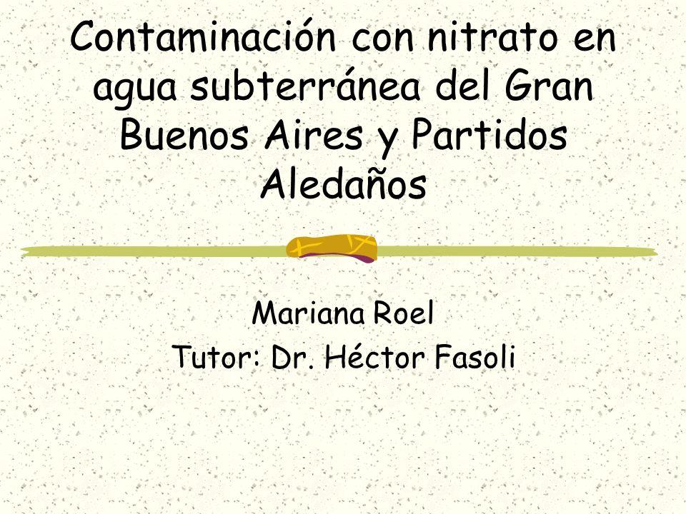 Contaminación con nitrato en agua subterránea del Gran Buenos Aires y Partidos Aledaños Mariana Roel Tutor: Dr. Héctor Fasoli