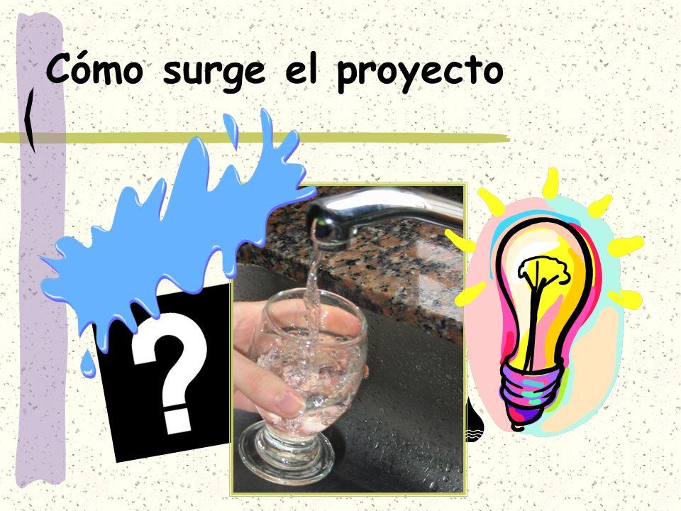 Cómo surge el proyecto