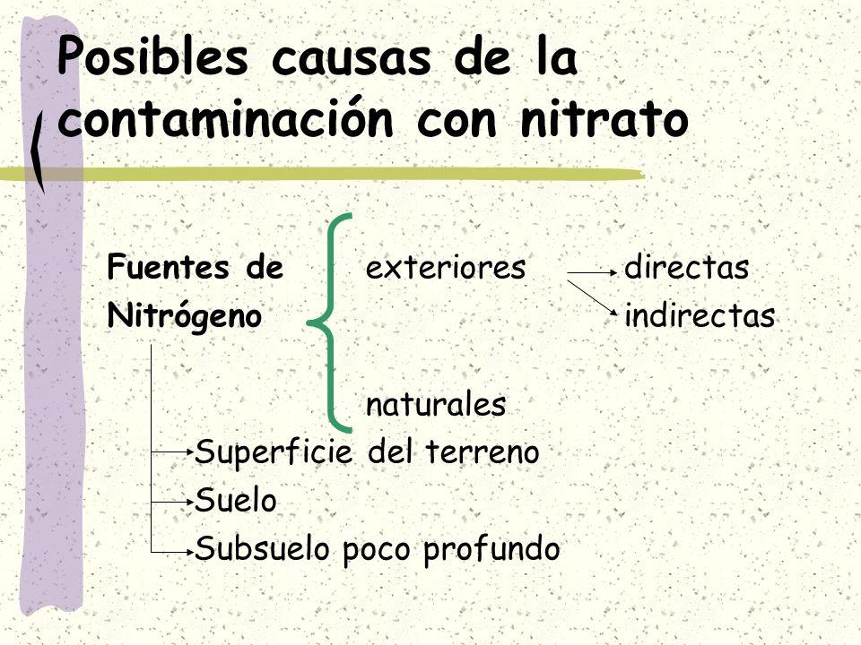 Posibles causas de la contaminación con nitrato Fuentes de exterioresdirectas Nitrógeno indirectas naturales Superficie del terreno Suelo Subsuelo poc