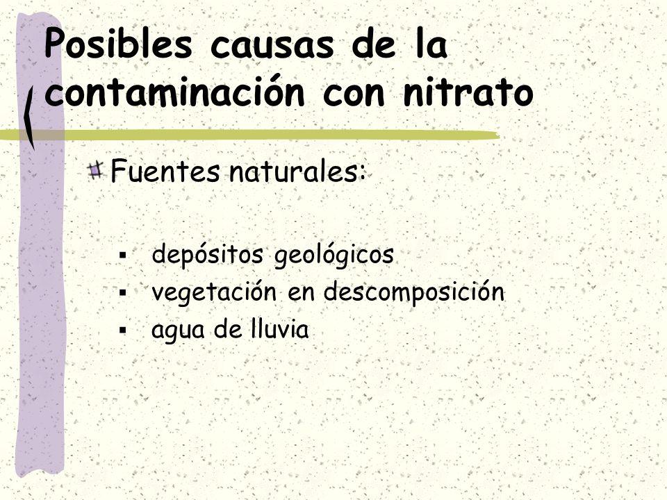 Posibles causas de la contaminación con nitrato Fuentes naturales: depósitos geológicos vegetación en descomposición agua de lluvia