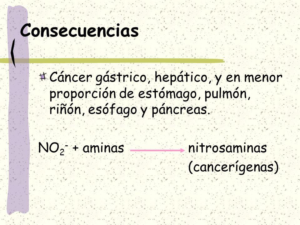Consecuencias Cáncer gástrico, hepático, y en menor proporción de estómago, pulmón, riñón, esófago y páncreas. NO 2 - + aminasnitrosaminas (cancerígen