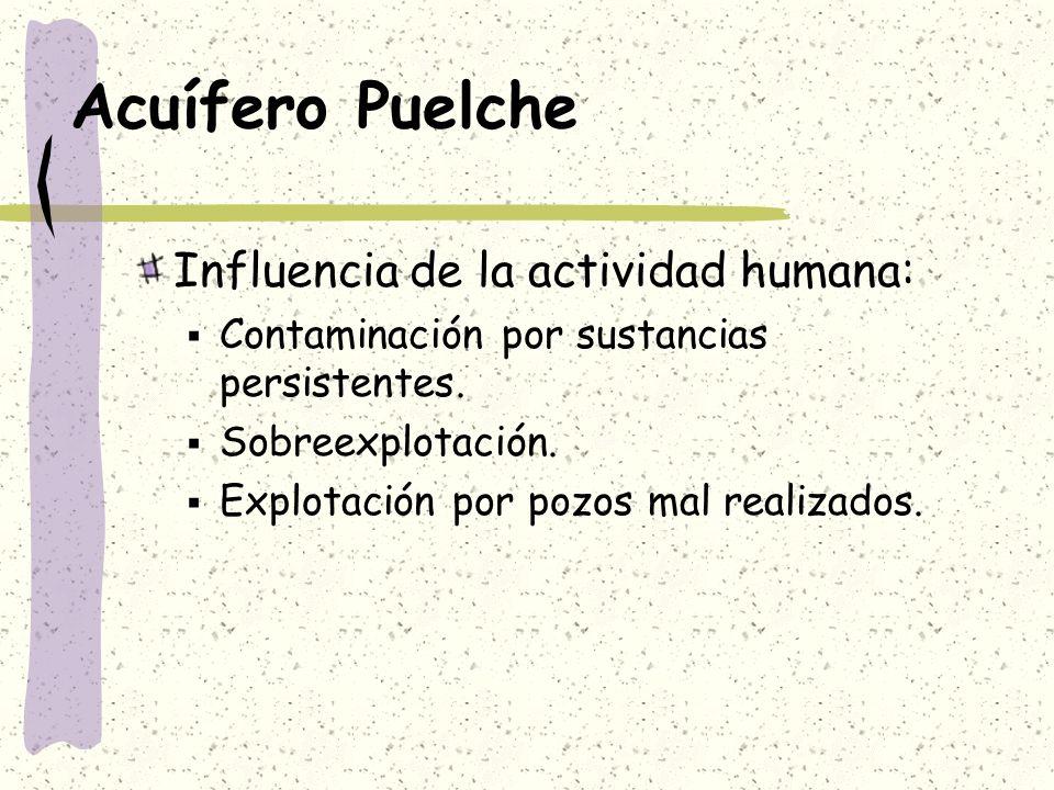 Acuífero Puelche Influencia de la actividad humana: Contaminación por sustancias persistentes. Sobreexplotación. Explotación por pozos mal realizados.