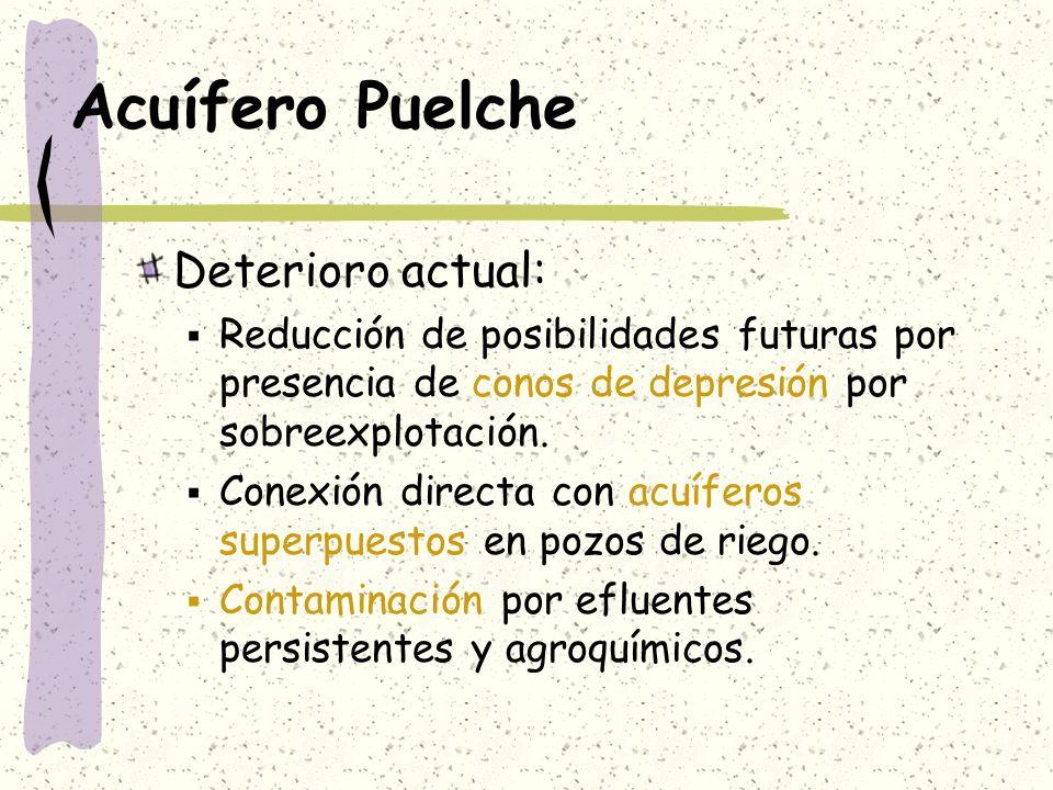 Acuífero Puelche Deterioro actual: Reducción de posibilidades futuras por presencia de conos de depresión por sobreexplotación. Conexión directa con a