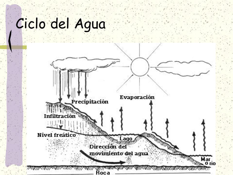 Ciclo del agua Se completa cuando el agua que escurre superficial o subterráneamente alcanza, por gravedad, el nivel de base, que es el nivel más bajo de cada cuenca.