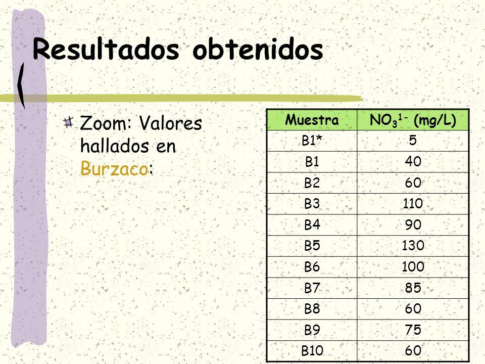 Resultados obtenidos Zoom: Valores hallados en Burzaco: MuestraNO 3 1- (mg/L) B1*5 B140 B260 B3110 B490 B5130 B6100 B785 B860 B975 B1060
