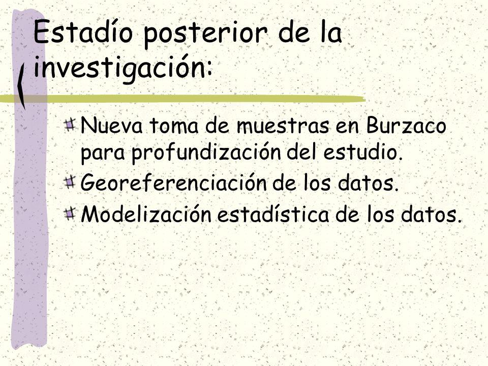 Estadío posterior de la investigación: Nueva toma de muestras en Burzaco para profundización del estudio. Georeferenciación de los datos. Modelización