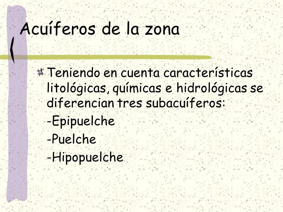 Acuíferos de la zona Teniendo en cuenta características litológicas, químicas e hidrológicas se diferencian tres subacuíferos: -Epipuelche -Puelche -H