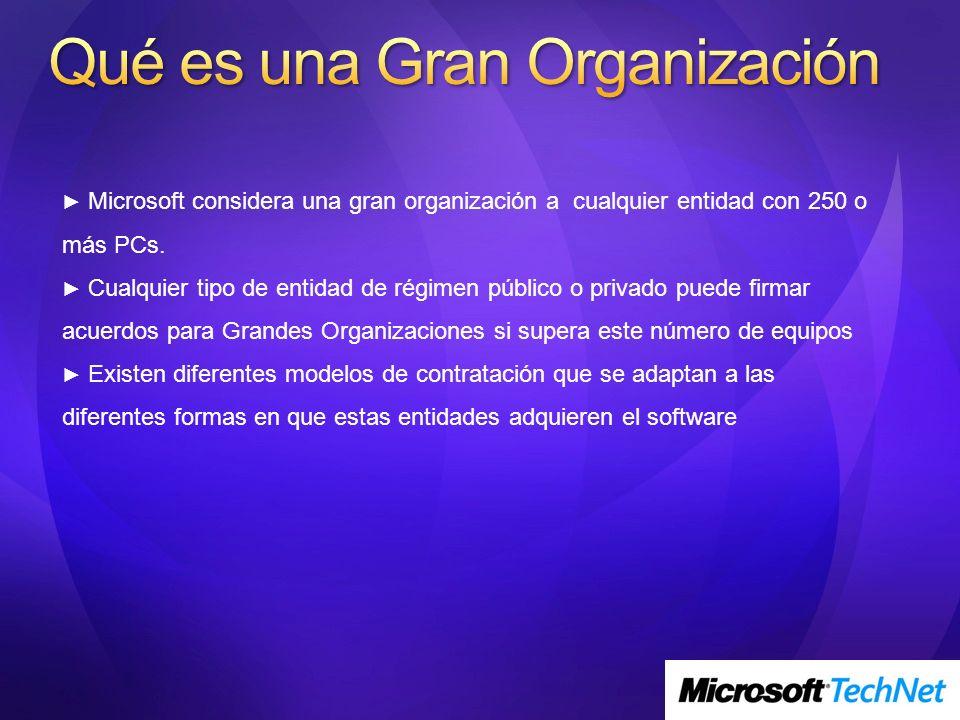 Microsoft considera una gran organización a cualquier entidad con 250 o más PCs. Cualquier tipo de entidad de régimen público o privado puede firmar a