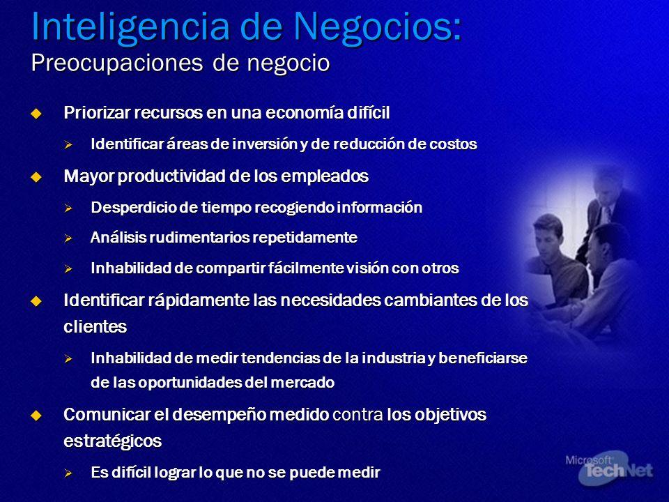 Inteligencia de Negocios: Preocupaciones de negocio Priorizar recursos en una economía difícil Priorizar recursos en una economía difícil Identificar