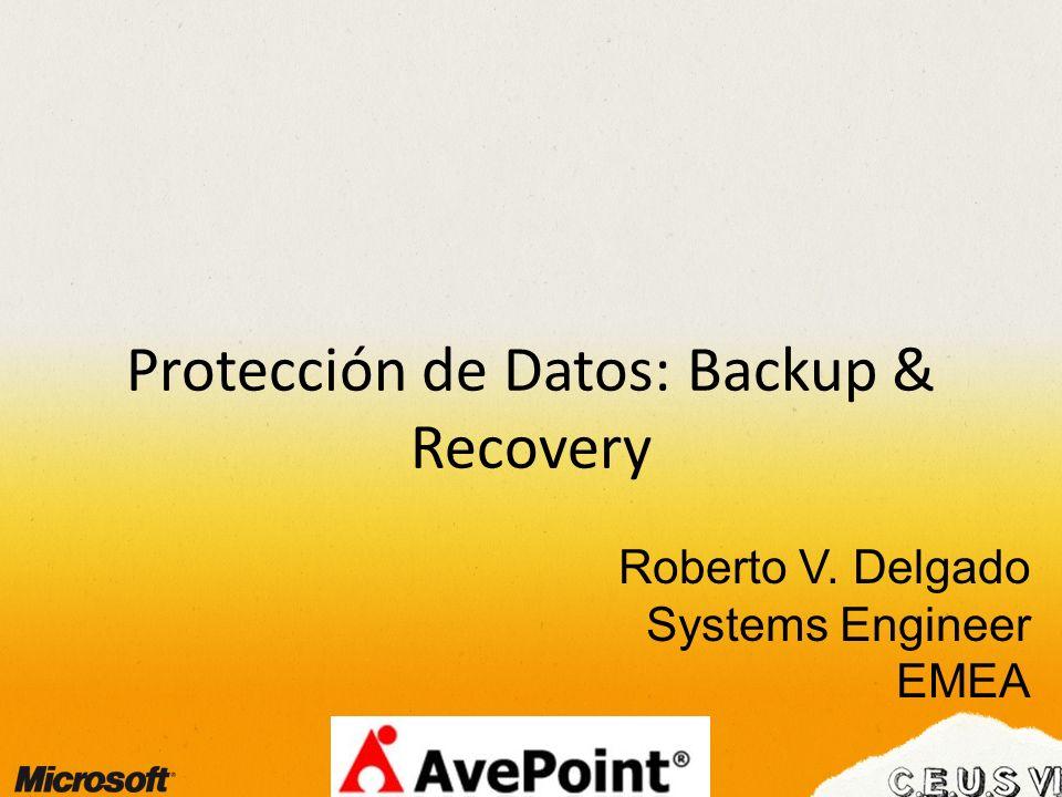 Protección de Datos: Backup & Recovery Roberto V. Delgado Systems Engineer EMEA