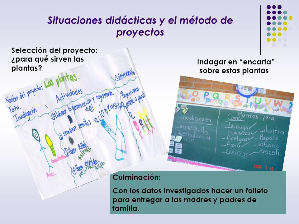 Niñas y niños trabajando del proyecto Indagando en Encarta las palabras: coliflor y acelgas.