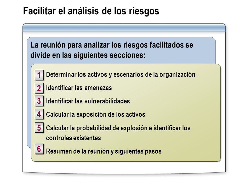 Facilitar el análisis de los riesgos La reunión para analizar los riesgos facilitados se divide en las siguientes secciones: Determinar los activos y