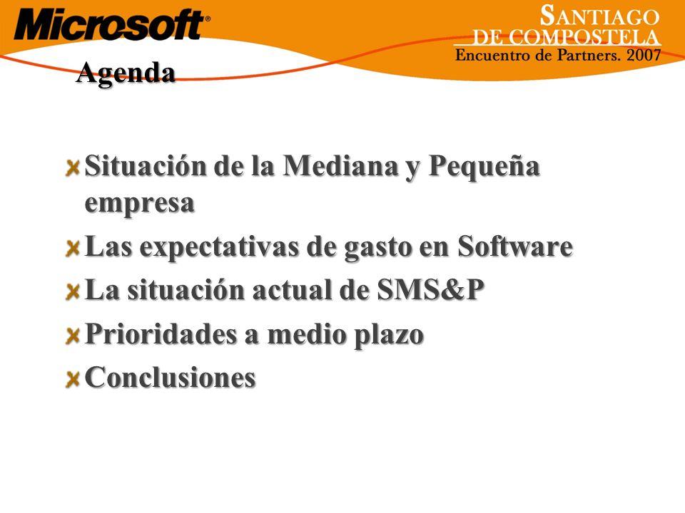 Agenda Situación de la Mediana y Pequeña empresa Las expectativas de gasto en Software La situación actual de SMS&P Prioridades a medio plazo Conclusi