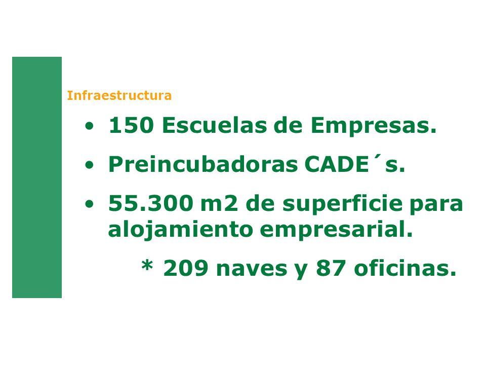 Infraestructura 150 Escuelas de Empresas. Preincubadoras CADE´s. 55.300 m2 de superficie para alojamiento empresarial. * 209 naves y 87 oficinas.