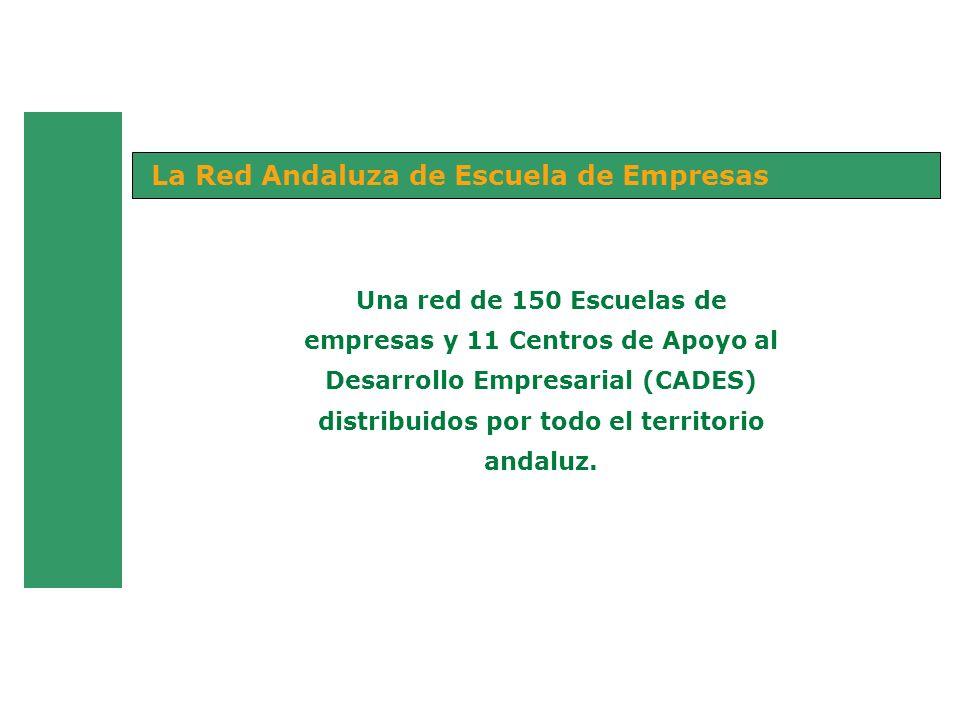 Una red de 150 Escuelas de empresas y 11 Centros de Apoyo al Desarrollo Empresarial (CADES) distribuidos por todo el territorio andaluz. La Red Andalu