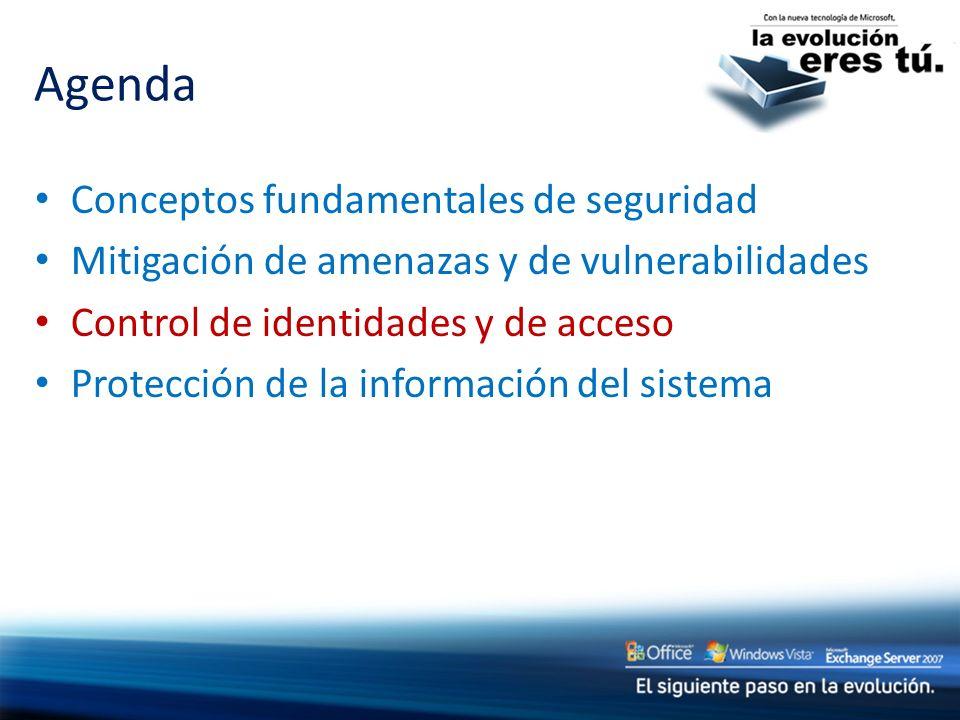 Conceptos fundamentales de seguridad Mitigación de amenazas y de vulnerabilidades Control de identidades y de acceso Protección de la información del