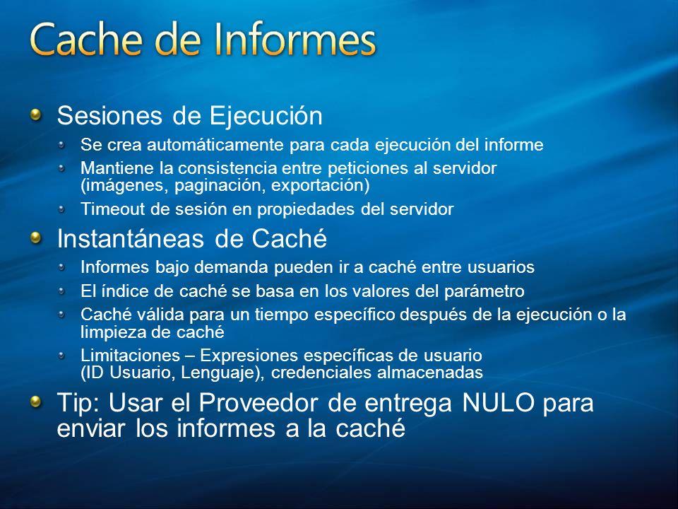 Sesiones de Ejecución Se crea automáticamente para cada ejecución del informe Mantiene la consistencia entre peticiones al servidor (imágenes, paginac
