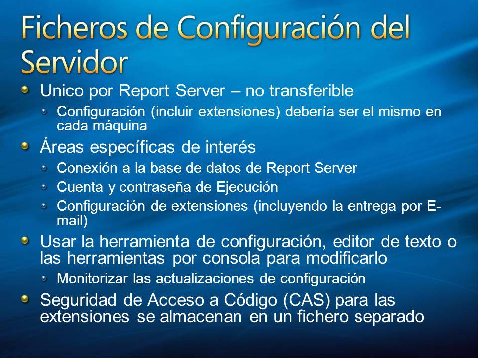 Unico por Report Server – no transferible Configuración (incluir extensiones) debería ser el mismo en cada máquina Áreas específicas de interés Conexi
