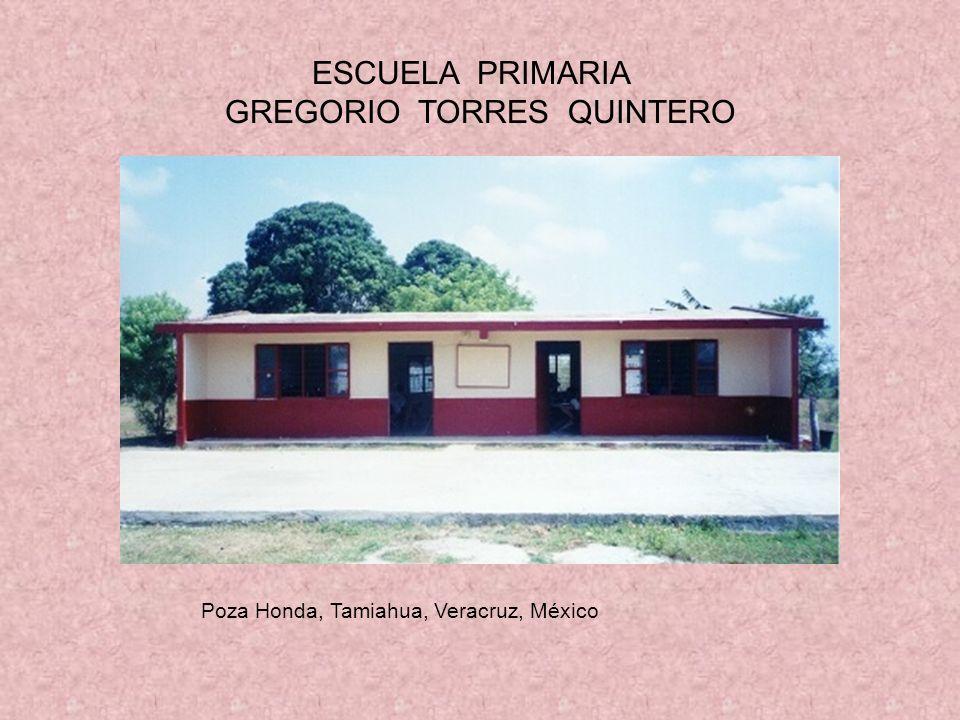 ESCUELA PRIMARIA GREGORIO TORRES QUINTERO Poza Honda, Tamiahua, Veracruz, México