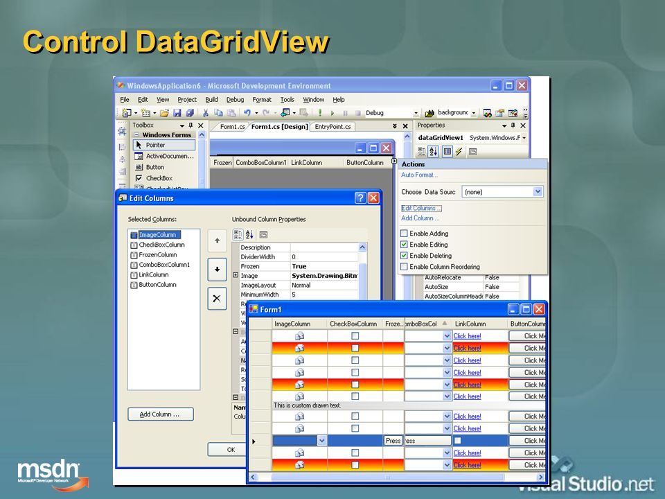 Control DataGridView