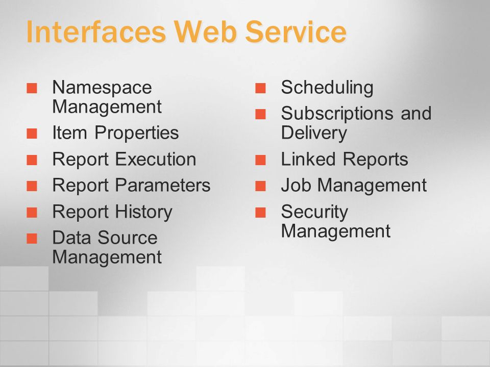 Interfaces Web Service Namespace Management Item Properties Report Execution Report Parameters Report History Data Source Management Scheduling Subscr