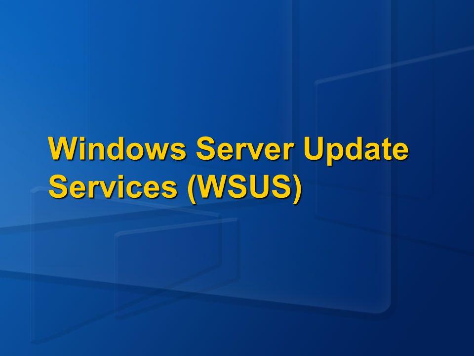 Único Servidor Microsoft update WSUS server Desktop clients