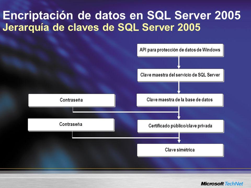 Encriptación de datos en SQL Server 2005 Jerarquía de claves de SQL Server 2005 API para protección de datos de Windows Clave maestra del servicio de