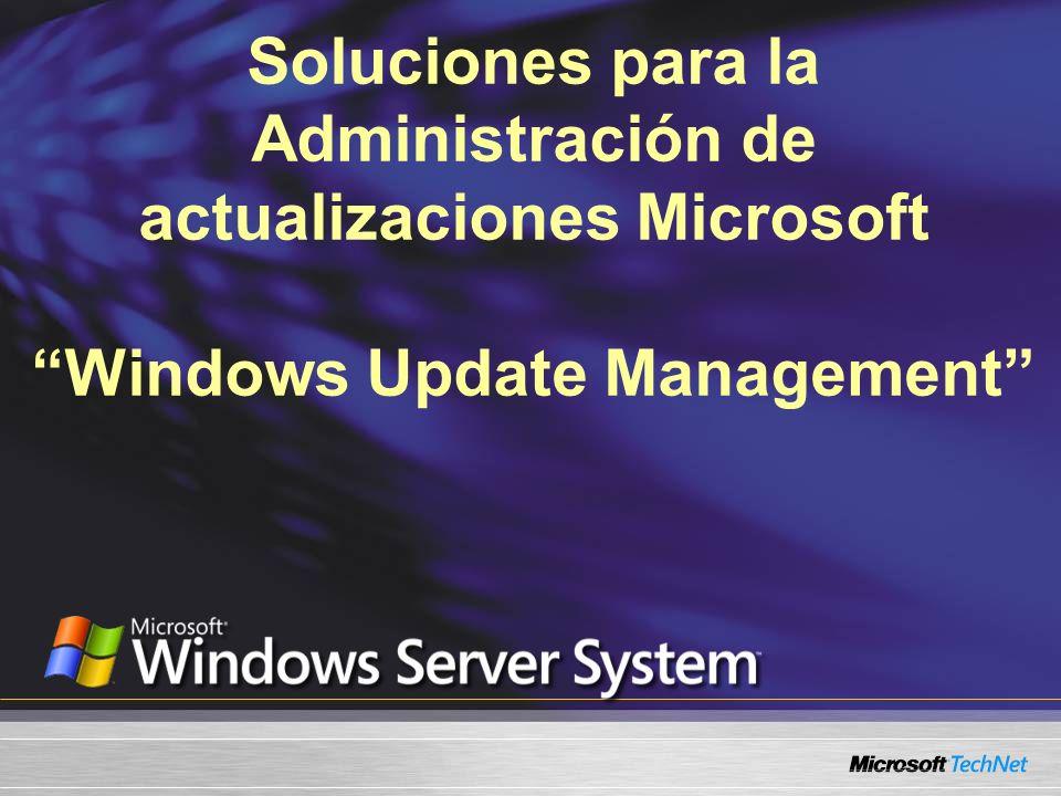 Soluciones para la Administración de actualizaciones Microsoft Windows Update Management