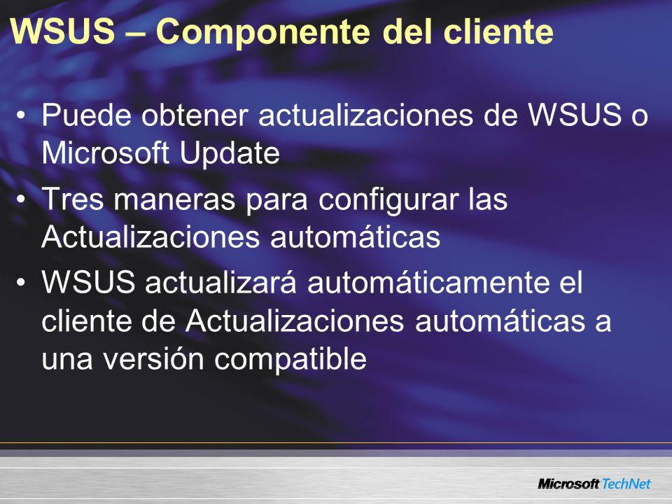 WSUS – Componente del cliente Puede obtener actualizaciones de WSUS o Microsoft Update Tres maneras para configurar las Actualizaciones automáticas WS