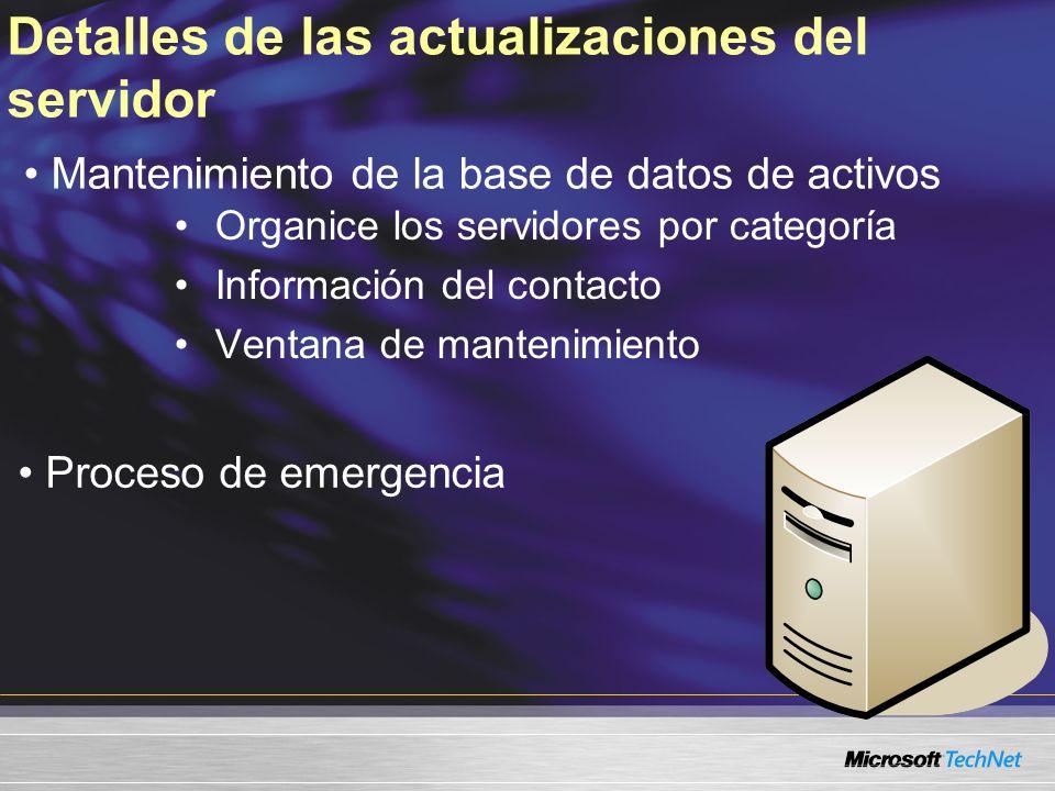 Detalles de las actualizaciones del servidor Organice los servidores por categoría Información del contacto Ventana de mantenimiento Mantenimiento de la base de datos de activos Proceso de emergencia
