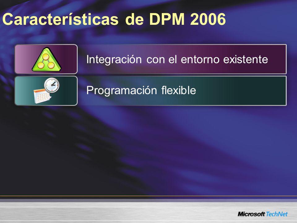 Características de DPM 2006 Integración con el entorno existente Programación flexible