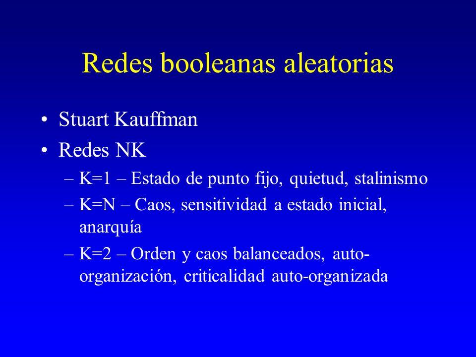 Redes booleanas aleatorias Stuart Kauffman Redes NK –K=1 – Estado de punto fijo, quietud, stalinismo –K=N – Caos, sensitividad a estado inicial, anarq