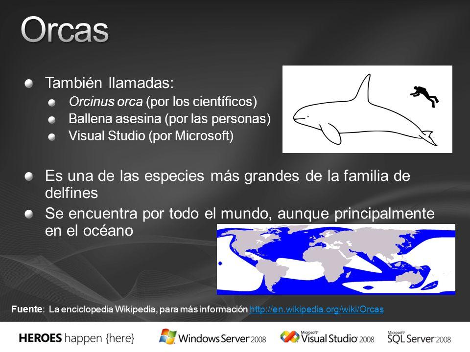 Israel Garcia / Pablo Junco App. & Plat. Development Consultants Microsoft Services