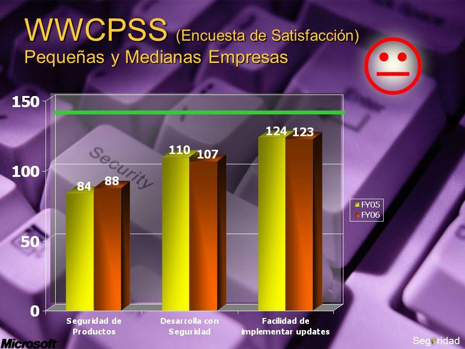Segridad WWCPSS (Encuesta de Satisfacción) Pequeñas y Medianas Empresas