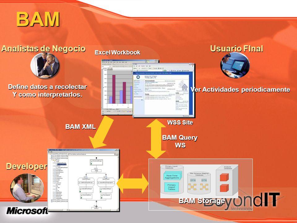 BAM Excel Workbook WSS Site Analistas de Negocio Define datos a recolectar Y como interpretarlos. Developer Usuario FInal Ver Actividades periodicamen