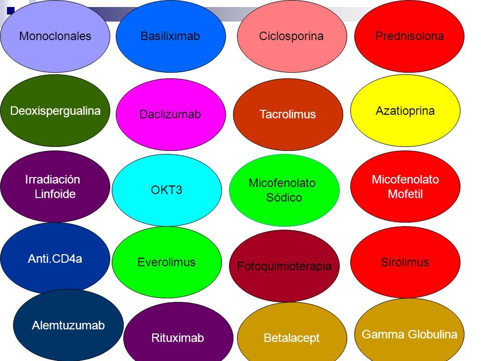 EverolimusSirolimus Micofenolato Sódico Micofenolato Mofetil Tacrolimus Ciclosporina Azatioprina Prednisolona Deoxispergualina Irradiación Linfoide An